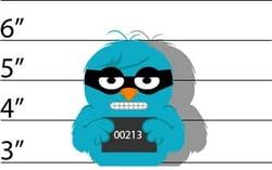jail3.jpg